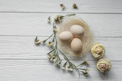 Composition en Pâques avec des oeufs et des pétales violets secs des fleurs Photos stock