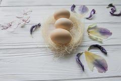 Composition en Pâques avec des oeufs et des pétales violets secs des fleurs Image libre de droits