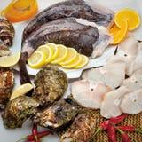 Composition en poissons de cousine de nourriture, ingrédient pour la consommation Images libres de droits