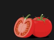 Composition en tomate illustration stock