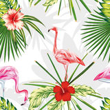 Composition exotic birds flamingos plants flowers light backgrou Royalty Free Stock Image