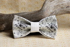 Composition: Extravagant beige with a black small pattern of a bow tie and a wooden stick curve on a beige background Royalty Free Stock Images