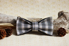 Composition: Extravagant checkered beige with a black small pattern of a bow tie, lumps from a larch and a wooden curve stick on a Royalty Free Stock Photography