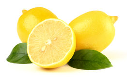 Composition of a few lemons with leaves Stock Image