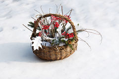 Composition of fir branches, rowan and leaves. Composition of fir branches, rowan and leaves in wicker basket on a background of snow Stock Images