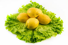 Composition of five fresh lemons on salad on white background Stock Photos