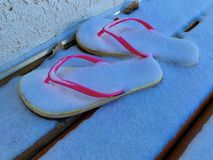 composition of Flip flops covered with snow. Ideal image for tourism. stock photo