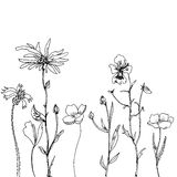 Composition florale illustration stock