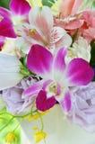 Composition florale avec l'orchidée images libres de droits