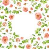 Composition florale avec les roses roses Images stock