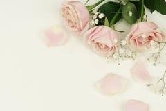 Composition florale des roses et des pétales roses Image libre de droits