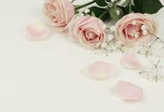 Composition florale des roses et des pétales roses Photographie stock