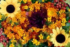 Composition florale des soucis, des tournesols et du Kalina rouge Images libres de droits