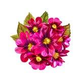 Composition florale peinte à la main abstraite Fleurs rouges d'isolement Photo stock