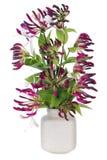 Composition florale pourpre en Minimalistic Images stock