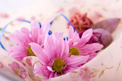 Composition with flowers. Shoot of nice abstract composition with flowers Stock Photo
