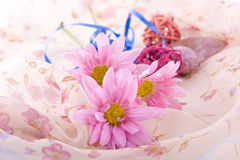 Composition with flowers. Shoot of nice abstract composition with flowers Royalty Free Stock Image