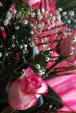 Composition of flowers. Pinky-white rose in a composition with little white flowers Royalty Free Stock Image