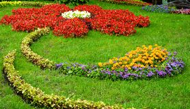 Composition of flowers on grass Stock Photo