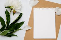 Composition with flowers and notebook on white background. Mock up for your design. Flat lay. Top view Stock Photo