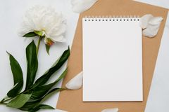 Composition with flowers and notebook on white background. Mock up for your design. Flat lay. Top view Royalty Free Stock Photography