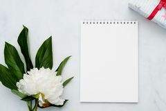 Composition with flowers and notebook on white background. Mock up for your design. Flat lay. Top view Stock Images