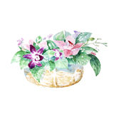 Bouquet with flowers orchid in the basket Stock Photography