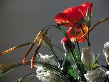 Composition of flowers Royalty Free Stock Photo
