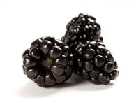 Composition of fresh blackberries royalty free stock image
