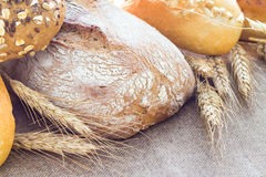 Composition fresh bread crispy rolls Royalty Free Stock Images
