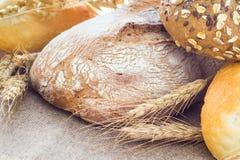 Composition fresh bread crispy rolls Stock Images