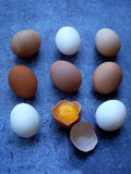 Composition of fresh farm white and brown eggs stock images