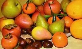 Autumn fruit, still life. Composition with fresh fruit of various kind, closeup Royalty Free Stock Image