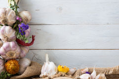 Composition of fresh garlic, dried herbs and flowers. Royalty Free Stock Photos