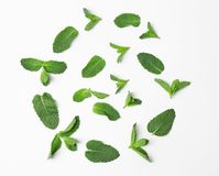 Composition with fresh green mint leaves on white background, top view. Flat lay composition with fresh green mint leaves on white background Royalty Free Stock Image