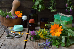 Composition of fresh herbs and flower used in natural alternative medicine or cosmetology for preparation of cosmetics, cream, soa stock images