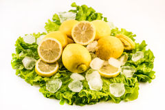 Composition of fresh lemons and ice on salad on white background Royalty Free Stock Image