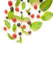 Composition with Fresh mint leaves and red raspberries and blackcurrant Stock Photo