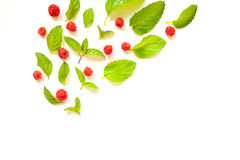 Composition with Fresh mint leaves and red raspberries Royalty Free Stock Images