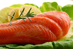 Composition with fresh raw salmon fillet.  Stock Photography