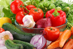 Composition with fresh raw vegetables. With visible drops of water Royalty Free Stock Images