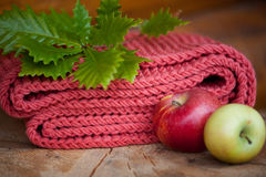 Composition fresh red apples, warm scarf and autumn leaves. Stock Photography