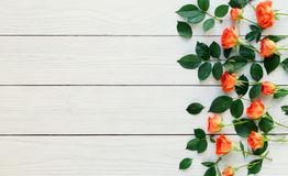 Composition of fresh roses on a white wooden background. copy space. top wiew. Composition of fresh orange roses on a white wooden background Stock Photos