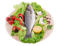 Composition of fresh seabass Royalty Free Stock Image
