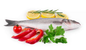 Composition of fresh seabass Royalty Free Stock Images