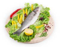 Composition of fresh seabass and vegetables. Royalty Free Stock Photography