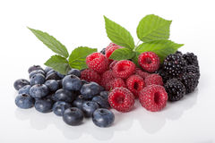Composition of fresh wildberries. Composition of fresh blueberries,raspberries and blackberries Stock Photo