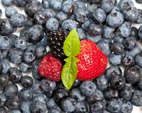 Composition of fruits Royalty Free Stock Photos