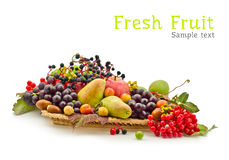 Composition of fruits Royalty Free Stock Photo