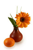 Composition with gerber daisy in vase. And tangerine. With a Clipping path Stock Photography
